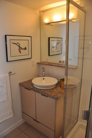 Photo 9: 308 1082 SEYMOUR Street in Vancouver West: Downtown VW Home for sale ()  : MLS®# V931476