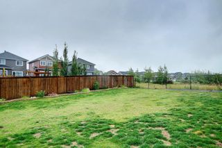 Photo 49: 2111 BLUE JAY Point in Edmonton: Zone 59 House for sale : MLS®# E4261289