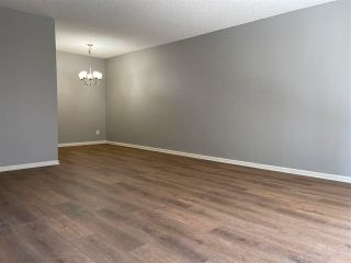 """Photo 2: 103 12096 222 Street in Maple Ridge: West Central Condo for sale in """"Canuck Plaza"""" : MLS®# R2588460"""