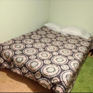 Photo 38: 105 Langton Drive SW in Calgary: North Glenmore Park Detached for sale : MLS®# A1066568