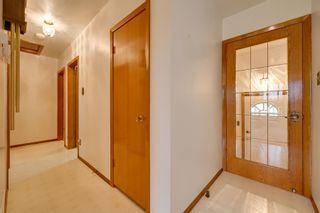Photo 20: 8924 135 Avenue in Edmonton: Zone 02 House for sale : MLS®# E4257137