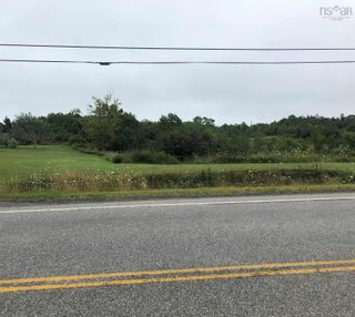 Photo 8: Lot 101 Highway in Plympton: 401-Digby County Vacant Land for sale (Annapolis Valley)  : MLS®# 202120343