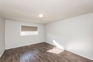 Photo 30: 186 Coral Springs Boulevard NE in Calgary: Coral Springs Detached for sale : MLS®# A1146889