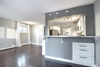 Photo 14: 402 534 20 Avenue SW in Calgary: Cliff Bungalow Apartment for sale : MLS®# A1065018