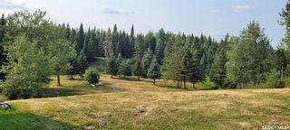 Photo 25: Forest Edge Acreage in Meadow Lake: Residential for sale (Meadow Lake Rm No.588)  : MLS®# SK865219