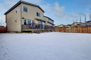 Photo 43: 32 Walden Bay SE in Calgary: Walden Detached for sale : MLS®# A1055250