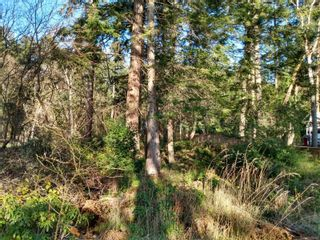 Photo 6: 161 Colvilleton Trail in : Isl Protection Island Land for sale (Islands)  : MLS®# 870953