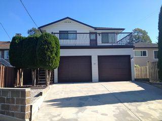 Photo 4: Killarney Area Home for Sale