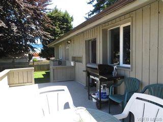 Photo 9: 890 Rockheights Ave in VICTORIA: Es Rockheights Half Duplex for sale (Esquimalt)  : MLS®# 693995