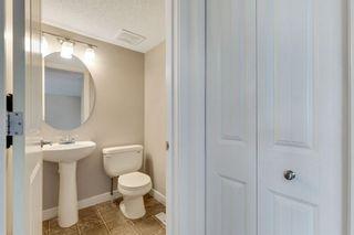 Photo 17: 129 Silverado Plains Close SW in Calgary: Silverado Detached for sale : MLS®# A1139715