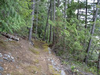 Photo 14: 320 Huck Rd in : Isl Cortes Island House for sale (Islands)  : MLS®# 863187