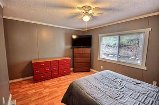Photo 8: 532 Evergreen Park in Edmonton: Zone 51 Mobile for sale : MLS®# E4261937