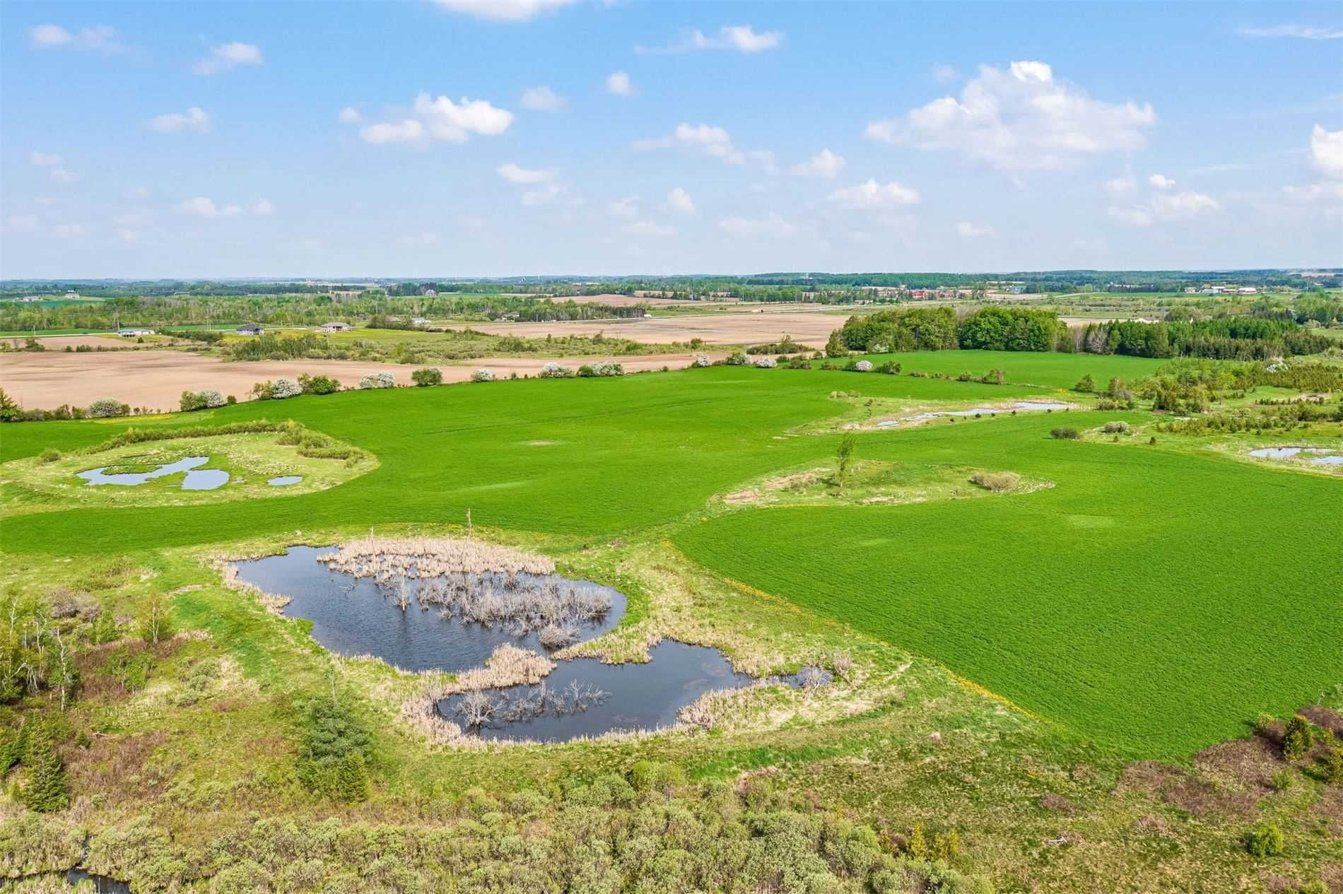 Main Photo: 514504 2nd Line in Amaranth: Rural Amaranth Property for sale : MLS®# X5163343