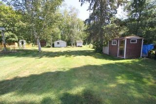 Photo 14: 37 Antiquary Road in Kawartha Lakes: Rural Eldon House (Bungalow) for sale : MLS®# X4557079