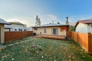 Photo 41: 10220 166 Avenue in Edmonton: Zone 27 House for sale : MLS®# E4265876
