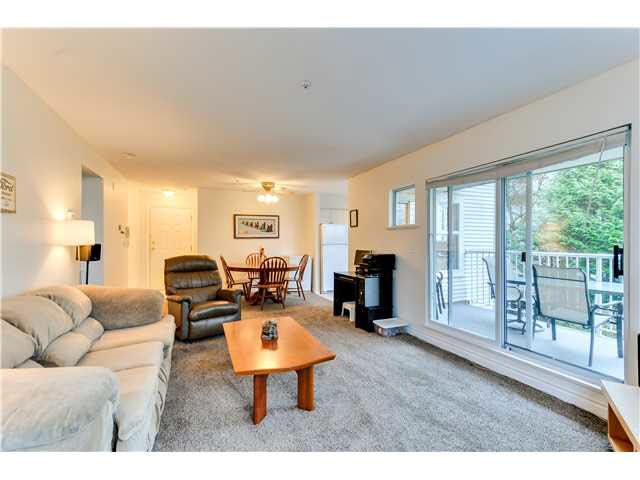 Main Photo: 203 20556 113 AVENUE in : Southwest Maple Ridge Condo for sale : MLS®# V1133688
