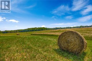 Photo 6: 2132 Poplar Road in Evansville: Agriculture for sale : MLS®# 2097424