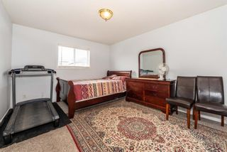 Photo 16: 57 MARTINVALLEY Place in Calgary: Martindale Detached for sale : MLS®# A1117247