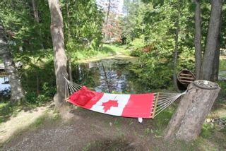 Photo 31: 11 Duncan Drive in Kawartha Lakes: Rural Eldon House (Bungalow-Raised) for sale : MLS®# X5341936