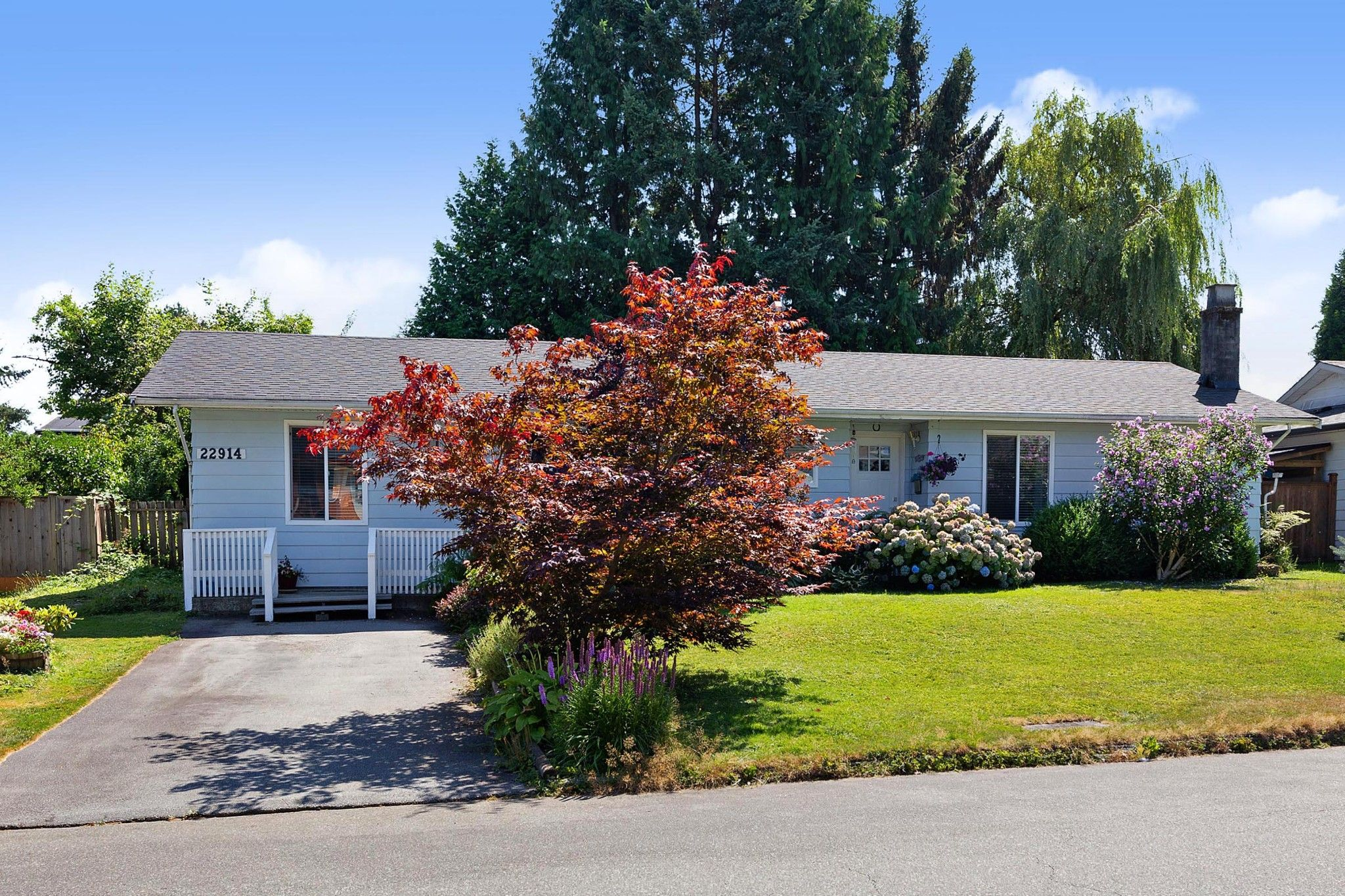 Main Photo: 22914 STOREY Avenue in Maple Ridge: East Central House for sale : MLS®# R2484029