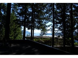 Photo 12: 170 SUNSET Drive in West Vancouver: Home for sale : MLS®# V1024969