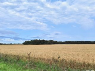 Photo 13: RM 486 5 Quarter Land in Moose Range: Farm for sale (Moose Range Rm No. 486)  : MLS®# SK867716