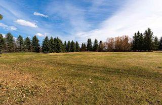 Photo 47:  in Edmonton: Zone 56 House for sale : MLS®# E4241034