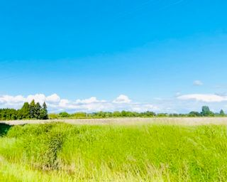Photo 12: 13091 NO 3 Road in Richmond: Gilmore Land Commercial for sale : MLS®# C8020768