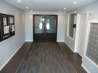 Photo 15: 319 5005 165 Avenue in Edmonton: Zone 03 Condo for sale : MLS®# E4251245