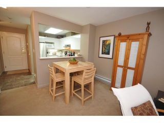 """Photo 16: 408 6745 STATION HILL Court in Burnaby: South Slope Condo for sale in """"THE SALTSPRING"""" (Burnaby South)  : MLS®# V858232"""