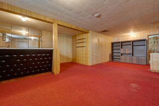 Photo 33: 7228 131A Avenue in Edmonton: Zone 02 House for sale : MLS®# E4252234