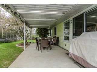 Photo 18: 35287 MARSHALL Road in Abbotsford: Abbotsford East House for sale : MLS®# F1407538