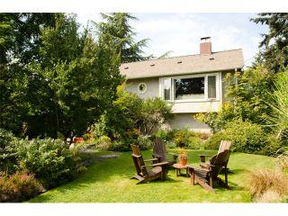 Main Photo: 5415 WESTMINSTER Avenue in Ladner: Neilsen Grove House for sale : MLS®# V1082594