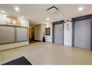 Photo 32: 313 1414 17 Street SE in Calgary: Inglewood Condo for sale : MLS®# C4063420