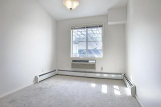 Photo 25: 503 2419 ERLTON Road SW in Calgary: Erlton Apartment for sale : MLS®# A1028425