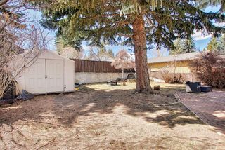 Photo 30: 687 Brookpark Drive SW in Calgary: Braeside Detached for sale : MLS®# A1093005