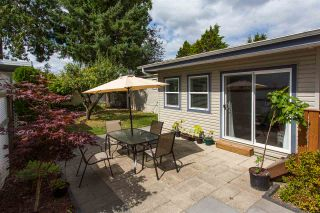 """Photo 20: 213 3665 244 Street in Langley: Aldergrove Langley Manufactured Home for sale in """"Langley Grove Estates"""" : MLS®# R2420727"""