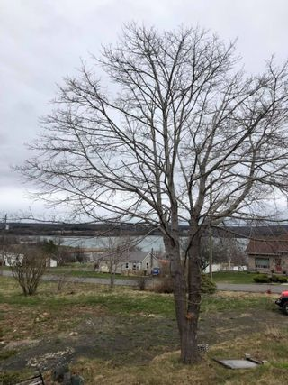 Photo 1: 22 WEST Street in Digby: 401-Digby County Vacant Land for sale (Annapolis Valley)  : MLS®# 202108940