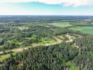 Photo 11: Pinebrook Block 1 Lot 2: Rural Thorhild County Rural Land/Vacant Lot for sale : MLS®# E4171871