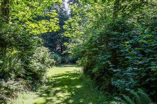 Photo 17: 6510 Eagles Dr in Courtenay: CV Courtenay North Land for sale (Comox Valley)  : MLS®# 878474