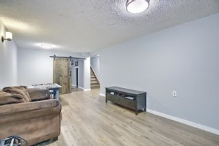 Photo 21: 502 KING Street: Spruce Grove House for sale : MLS®# E4248650