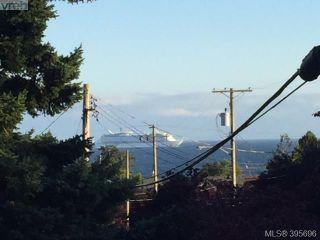 Photo 19: 208 1351 Esquimalt Rd in VICTORIA: Es Saxe Point Condo for sale (Esquimalt)  : MLS®# 793375