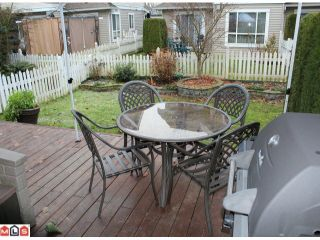 """Photo 9: 23 6513 200TH Street in Langley: Willoughby Heights Townhouse for sale in """"LOGIN CREEK"""" : MLS®# F1129284"""