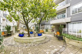 """Photo 19: 209 789 W 16TH Avenue in Vancouver: Fairview VW Condo for sale in """"SIXTEEN WILLOWS"""" (Vancouver West)  : MLS®# R2142582"""