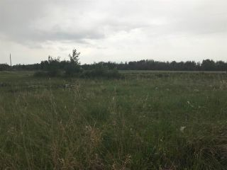 Photo 7: TWP 580 Rg Rd 240 Sturgeon County: Rural Sturgeon County Rural Land/Vacant Lot for sale : MLS®# E4248027