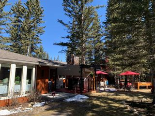 Photo 42: 48 Wolf Drive: Bragg Creek Detached for sale : MLS®# A1098484
