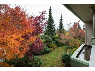 """Photo 18: 181 13888 70 Avenue in Surrey: East Newton Townhouse for sale in """"CHELSEA GARDENS"""" : MLS®# R2134265"""