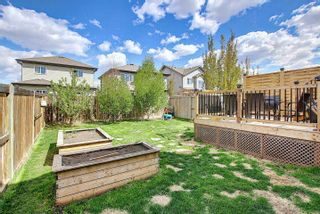 Photo 43: 37 Catalina Court: Fort Saskatchewan House Half Duplex for sale : MLS®# E4246938