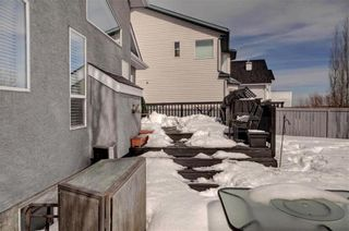 Photo 38: 246 CHAPARRAL Place SE in Calgary: Chaparral House for sale : MLS®# C4172141