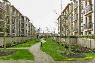 Photo 19: 210 21009 56 AVENUE in Langley: Salmon River Condo for sale : MLS®# R2047130